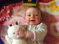 Sadie Bunny2